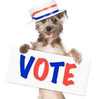 Vote_78024862_M-3