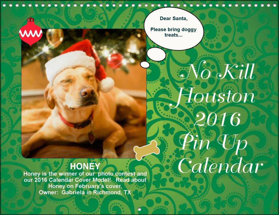 No kill houstons 2017 photo contest fund raiser an animal advocate kristyandbryce Image collections